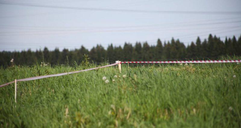 Мешканець смт Стара Синява сплатив кошти за використання 18 га самовільно зайнятої землі державної власності