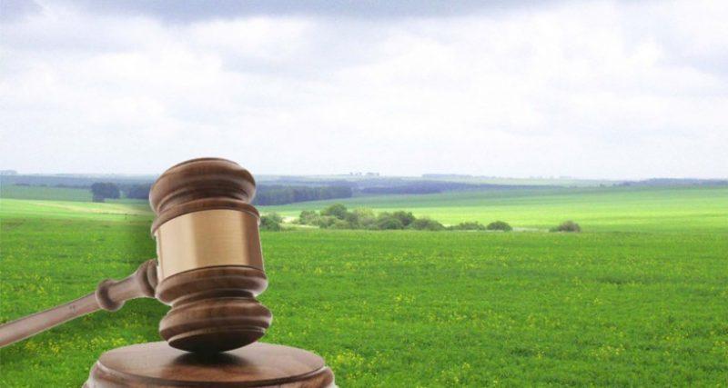 Хмельницька прокуратура повернула в державу 38 га землі на території Розсошанської сільради