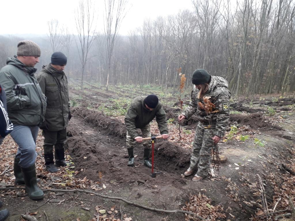 Лісівники, представники місцевої влади та громади долучилися до акції створення лісових культур