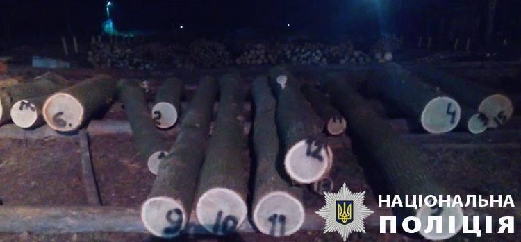В Ізяславському районі поліція викрила схему розкрадання лісу