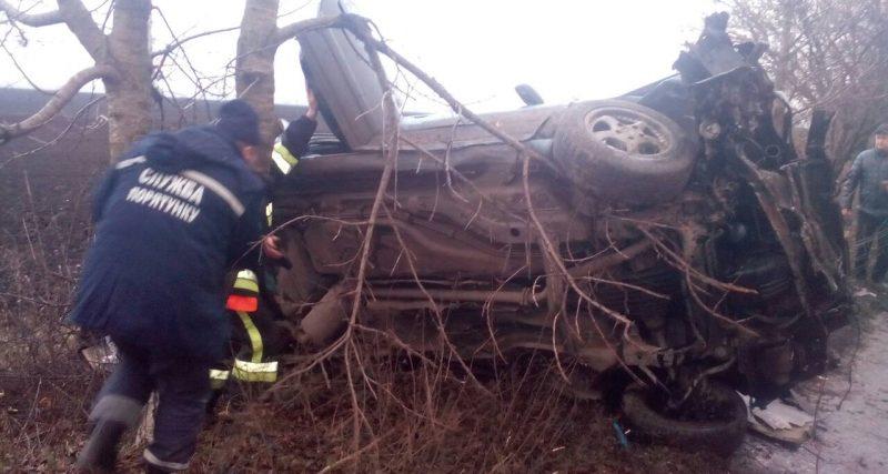 Теофіпольський район: внаслідок дорожньо-транспортної пригоди загинув 48-річний водій