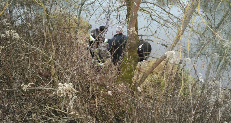 На Славутчині рятувальники витягли корову з річки