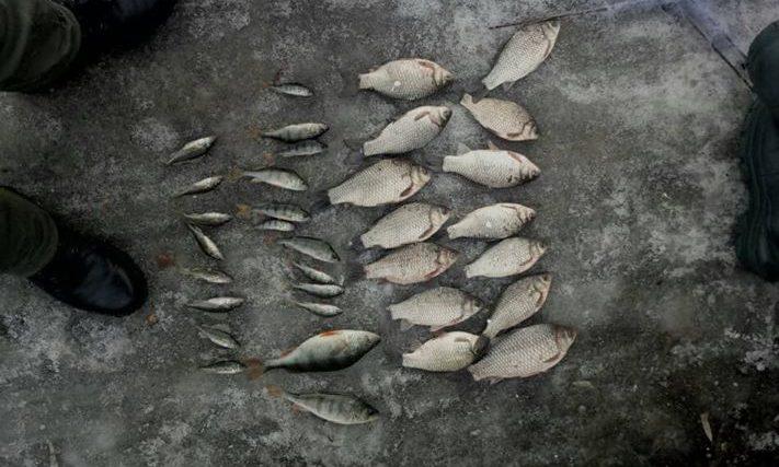 Хмельницький рибоохоронний патруль затримав майже 180 кг біоресурсів