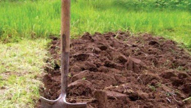 Кам'янець-Подільська прокуратура вимагає стягнення до бюджету 270 тис грн плати за використання землі