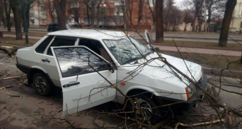 Буревій на Хмельниччині: повалені дерева та розбиті автівки