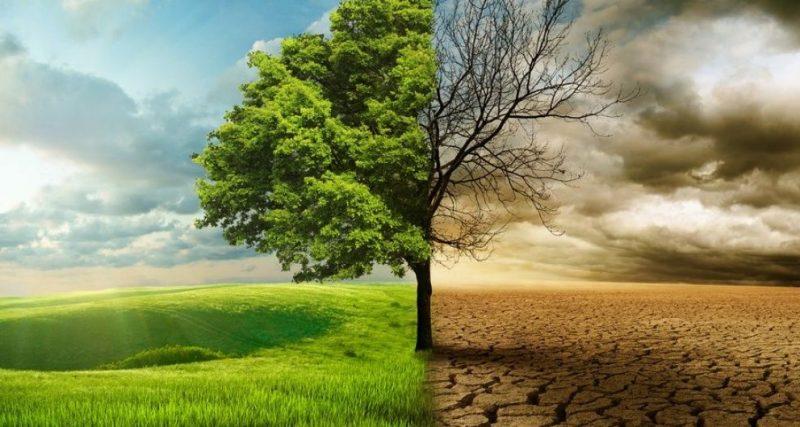 Які кліматичні проблеми містяни називають критичними для міст Хмельницької області?