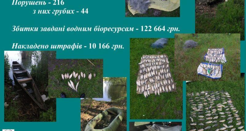 Під час нересту порушники завдали збитків на 123 тис. грн